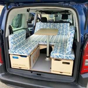 Sue Duffell's Cushions in car1